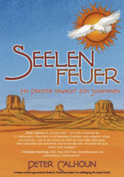 SeelenfeuerCover